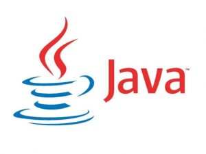 Java and JavaScript dominated software development in the 2010s